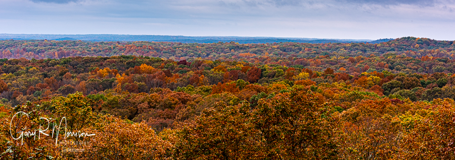 A changing of color in the valley Brown County SP IN