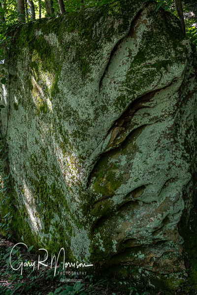 Sandstone rock Bluffs of Beaver Bend Martin County IN