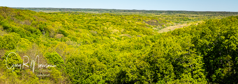 Spring Colors In A Valley Brown County SP IN