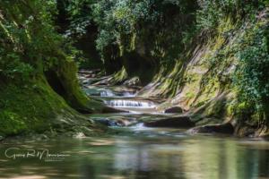 Fall Creek Gorge Preserve Potholes III Warren County IN