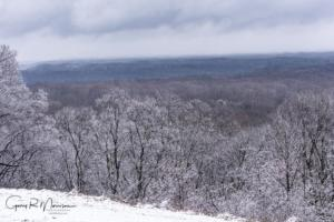 A snowy day in the hills of Brown County SP IN