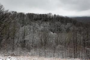 A snowy hillside Brown County SP