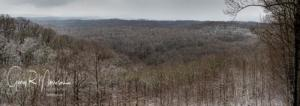 A winter day with snow Brown County SP