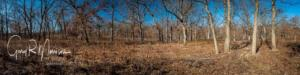 Stoutsburgh Savana Nature Preserve