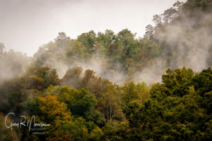 Early fall fog Daniel Boone National Forest KY