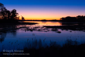 Sunrise on the salt marsh, Chincoteague Island