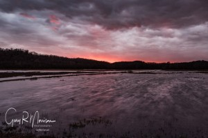Winter Sunset Stillwater Marsh Monroe County IN